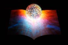 La palla magica dell'indovino, la strega, si trova sul libro magico aperto su un fondo nero immagine stock libera da diritti