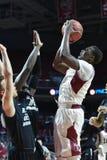2014 la pallacanestro degli uomini del NCAA - TEMPIO contro LIU Immagine Stock