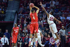 2015 la pallacanestro degli uomini del NCAA - Tempio-Houston Fotografie Stock Libere da Diritti