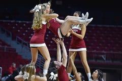 2015 la pallacanestro delle donne del NCAA - tempio contro lo stato del Delaware Immagini Stock