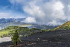 La palma风景彩虹 免版税库存图片
