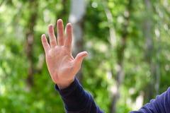 La palma aperta con le dita spante passa il segno La mano degli uomini di gesto del numero o delle elasticità cinque Concetto del fotografie stock libere da diritti