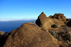 La Palma from Arure Stock Photography