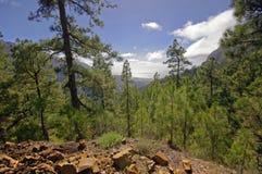 La Palma Caldera de Taburiente Royalty Free Stock Photo