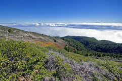 La Palma Caldera de Taburiente sea of clouds in canary Islands Royalty Free Stock Photo
