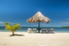 La palma corta solitaria al lado del paraguas del estilo de Tiki sombrea cuatro sillones vacíos en el borde del agua Fotos de archivo libres de regalías