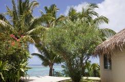 La palma cubrió con paja la choza en una playa tropical Imagenes de archivo