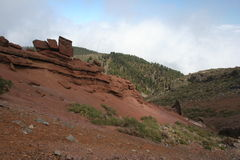 La Palma das Ilhas Canárias Imagens de Stock Royalty Free