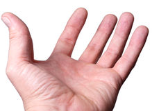 La palma della mano in su Fotografie Stock Libere da Diritti