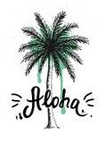 La palma disegnata a mano con pittura schizza Aloha iscrizione della mano, tipografia hawaiana di saluto di lingua royalty illustrazione gratis