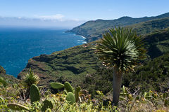 La Palma island, atlantic ocean Stock Photos