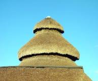 La palma lascia il tetto Fotografia Stock