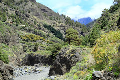 La Palma is one of the Canary Islands in the Atlantic Ocean next to Africa. The center of La Palma is the Caldera de Taburiente, a huge volcanic crater with a Royalty Free Stock Photos