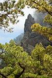 La Palma: Parco nazionale di Caldera de Taburiente Fotografia Stock Libera da Diritti