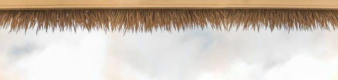 La palma ricopre di paglia il tetto Immagine Stock