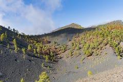 La palma ruta de los vulcanos 库存照片