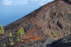 La palma ruta de los vulcanos 免版税图库摄影