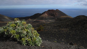 la palma tenuguia火山 图库摄影