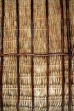 La palmera secada sale de la azotea y de vigas del palapa Imagen de archivo libre de regalías