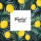 La palmera tropical de la selva se va con los limones en fondo negro stock de ilustración