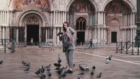 La paloma se sienta en el brazo del turista femenino hermoso con smartphone cerca de la catedral de San Marco en cámara lenta de  almacen de metraje de vídeo