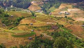 La Pan Tan från synvinkel arkivfoto