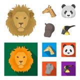 La panda, jirafa, hipopótamo, pingüino, los animales realistas fijó iconos de la colección en la historieta, acción plana del sím Imagenes de archivo