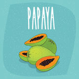 La papaia isolata fruttifica interi e pezzi incisi royalty illustrazione gratis