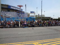 La parata 2013 della sirena di Coney Island 178 Fotografia Stock Libera da Diritti