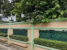 La pared anaranjada y verde adorn? con las hojas verdes frescas fotografía de archivo