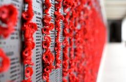 La pared de la amapola enumera los nombres de todos los australianos que murieron en el servicio de ejércitos Imagen de archivo libre de regalías