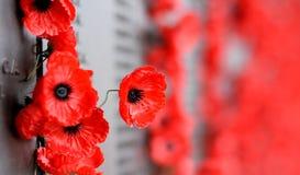 La pared de la amapola enumera los nombres de todos los australianos que murieron en el servicio de ejércitos Imágenes de archivo libres de regalías