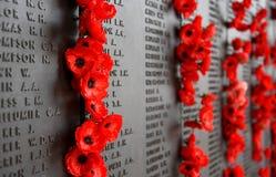 La pared de la amapola enumera los nombres de todos los australianos que murieron en el servicio de ejércitos Imagen de archivo