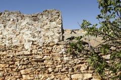 La pared de piedra de un cortijo y de un higo abandonados ramifica Imagen de archivo libre de regalías