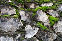 La pared de piedra vieja cubrió el musgo verde Foto de archivo