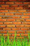 La pared del ladrillo y fondo del ladrillo con la hierba encendido abajo Fotos de archivo