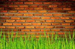 La pared del ladrillo y fondo del ladrillo con la hierba encendido abajo, el ladrillo rojo y la hierba encendido abajo Imagen de archivo libre de regalías