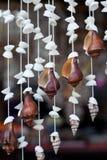 La pared del shell Fotografía de archivo libre de regalías