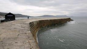 La pared famosa Dorset Inglaterra Reino Unido del puerto de Cobb Lyme Regis metrajes
