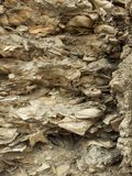 La pared más vieja de Tapia en los E.E.U.U. Fotografía de archivo