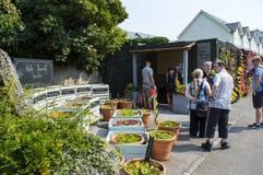 La pared que escucha, un proyecto de la comunidad en Margate, Kent Imágenes de archivo libres de regalías