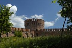 La pared y la torre de la fortaleza Imagenes de archivo