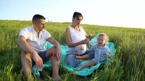 La pareja embarazada con la hija del niño tiene tiempo libre al aire libre en campo de hierba en la manta almacen de metraje de vídeo