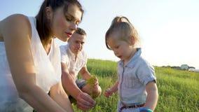 La pareja embarazada con la hija del niño tiene tiempo libre al aire libre que escoge las flores almacen de video