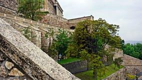 La parete di pietra della città di Budapest Fotografia Stock