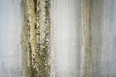 La parete di vecchio rimorchio di alluminio ossidato coperto di muffa fotografia stock libera da diritti