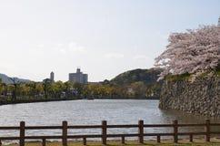 La parete esterna del castello di Himeji Fotografia Stock Libera da Diritti