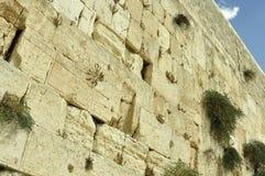 La parete lamentantesi, Gerusalemme immagine stock