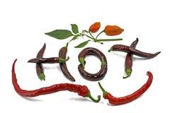 La parola calda è scritta con peperoncino su fondo bianco Vista superiore delle lettere del peperoncino rosso immagini stock