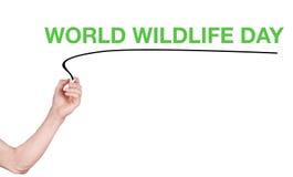 La parola del giorno della fauna selvatica del mondo scrive su fondo bianco Immagine Stock Libera da Diritti